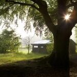 featherdown-farms-glamping-4