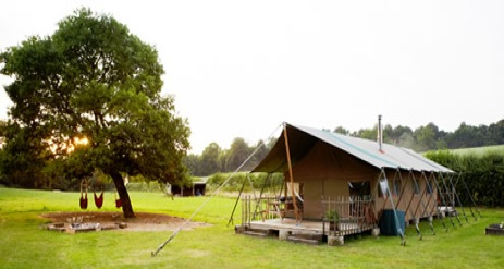 glamping-hampshire-cedar-valley-safari-tent.
