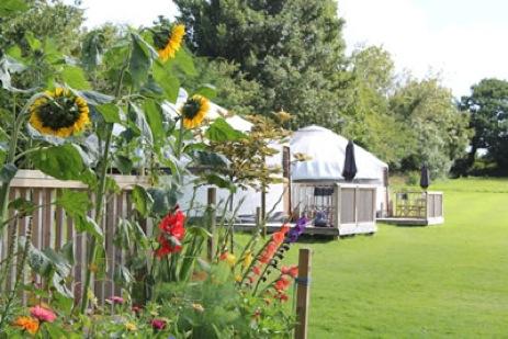 glamping-cornwall-luxury-cornish-yurts