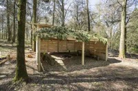 glamping-hampshire-cedar-valley-firepit