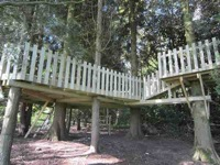 glamping-hampshire-cedar-valley-treehouse