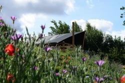 glamping-rutland-a-little-bit-of-rough-safari-tent-oak-s