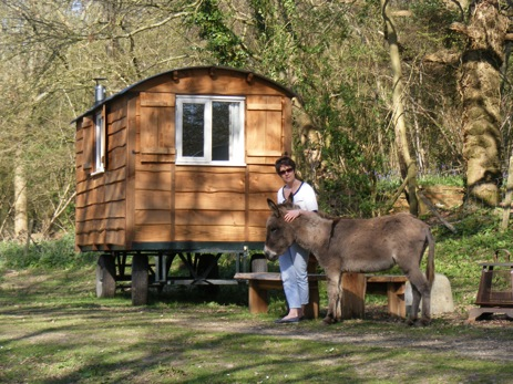 glamping-sussex-brighton-waydown-shepherds-huts-donkey