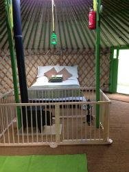 glamping-devon-oaktree-yurts-interior-s