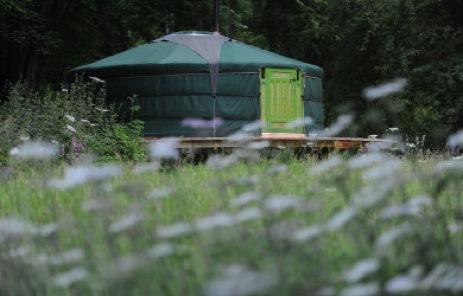glamping-wales-redwood-valley-yurts