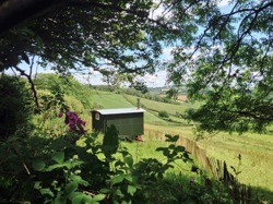glamping-cornwall-hideaway-huts-inthe-hedgerow
