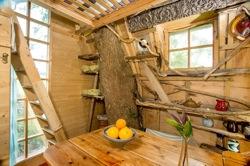 glamping-cornwall-outlandish-holidays-trrehouse-s