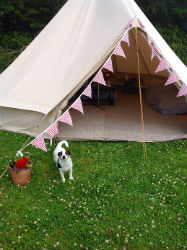 glamping-wales-beavers-retreat-bell-tent-exterior-s