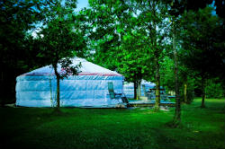 glamping-hampshire-meon-springs-yurt-in-trees-s