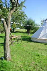glamping-the-cotswolds-orchard-bell-tent-tree-view-s
