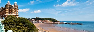 glamping-yorkshire-falcon-forest-scarborough-s