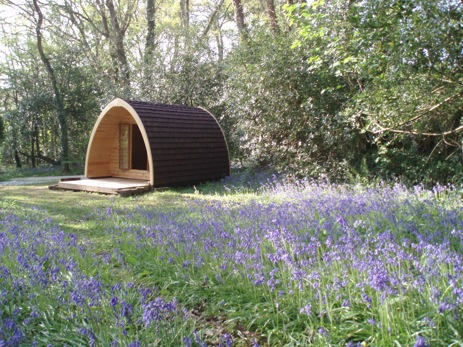 glamping-cornwall-ruthern-valley-pod-in-bluebells