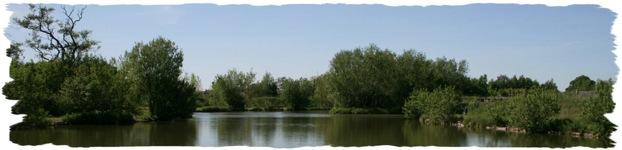 glamping-yorkshire-stonebridge-fishing-lakes