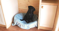 glamping-leicestershire-eye-ketleby-lakes-the-pod-dog-s