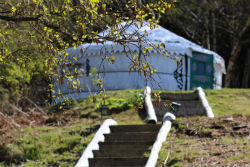 glamping-scotland-kelburn-estate-yurt-through-trees-small