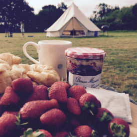 glamping-norfolk-gorsey-meadow-strawberries