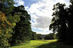 glamping-wales-redwood-valley-yurts-the-wood-view-s