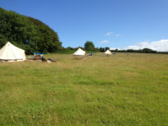 glamping-wales-sloeberry-farm-bell-tents-s