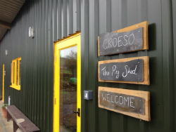 glamping-wales-with-hot-tub-one-cat-farm-pig-shed-s