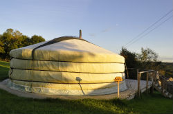 glamping-devon-oak-tree-lane-a-yurt