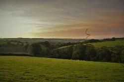 glamping-devon-oak-tree-lane-countryside-kite