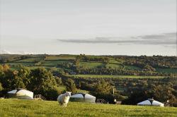 glamping-devon-oak-tree-lane-yurts-and-sheep