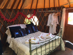glamping-dorset-higher-manor-farm-holidays-skylark-s
