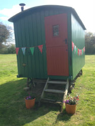 glamping-sussex-bulls-head-shepherds-hut-s