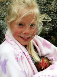 glamping-cornwall-with-hot-tub-west-kellow-yurts-chicken