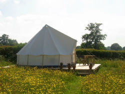 glamping-herefordshire-bell-tent-field-s
