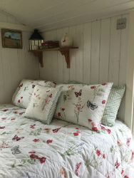 Glamping-Sussex-Bluecap-Farm-Shepherds-Hut-Bed-s