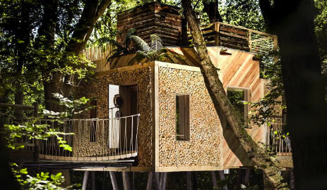 THE WOODSMAN TREEHOUSE Luxury Glamping Dorset near Lyme Regis