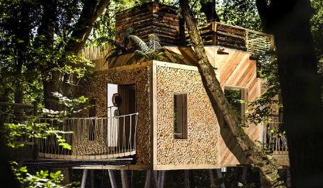 glamping-dorset-near-lyme-regis-luxury-the-luxury-treehouse