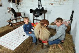 glamping-leicestershire-the-dandelion-hideaway-little-horse-helpers-s
