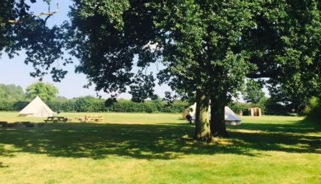 glamping-norfolk-gorsey-meadow-bell-tent-field