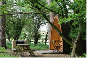 glamping-suffolk-west-stow-pods-mega-pod-ss