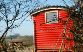 glamping-wales-the-yurt-farm-yurt-red-train-carriage-s