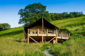glamping-devon-longland-lodges-safari-2