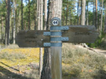 glamping-scotland-with-hot-tub-culbin-edge-forest-signs-s