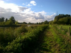 glamping-suffolk-west-stow-pods-cabin-view-paths-s