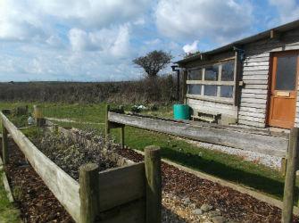 glamping-cornwall-west-kellow-yurts-herb-garden-s