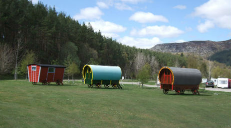 WILDCAT GYPSY PODS AND LODGE Glamping Scotland