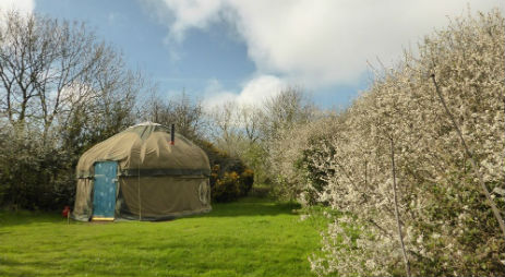 ANGLESEY TIPI AND YURT HOLIDAYS Glamping Wales