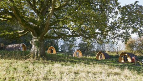 WHITEMEAD FOREST PARK Glamping Gloucestershire