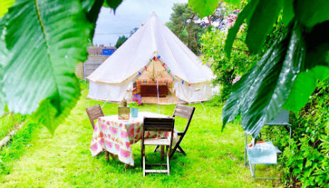 HARRYS FIELD Glamping Hampshire
