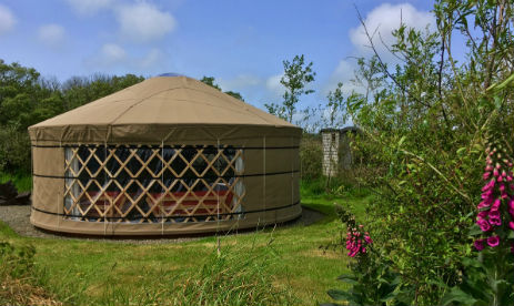 TY PARKE CAMPING AND YURT HOLIDAYS Glamping Pembrokeshire Wales