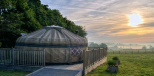 LITTLE HALDEN FARM Glamping in Kent
