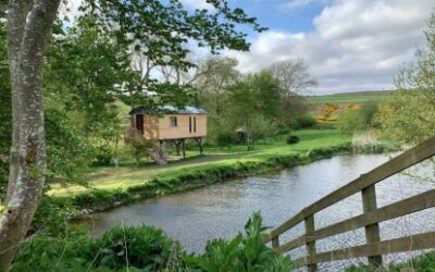 Glamping Scotland near Edinburgh Dod Mill The Stilt House treehouse
